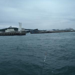 10月14日 カワハギ釣り
