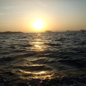 11月17日 カワハギ釣り