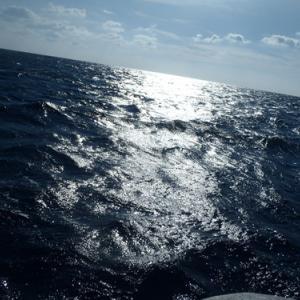1月4日 カワハギ釣り
