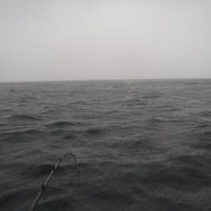 6月28日 イサキ釣り