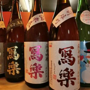 和食 花くるま お宝到着「写楽 純米吟醸備前雄町」寫楽でも特に少量限定酒です