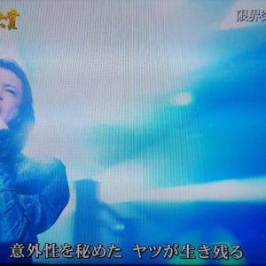 日本レコード大賞2019 (大賞の結果は伏せています)