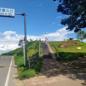 「愛妻の丘」名山とキャベツ畑の風景 〔群馬県嬬恋村〕