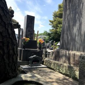臼井先生のお墓を訪ねて心新たに6月に臨む