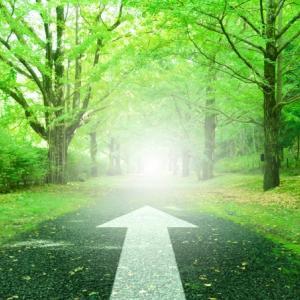 過去・現在・未来とレイキの出会いの旅は続く