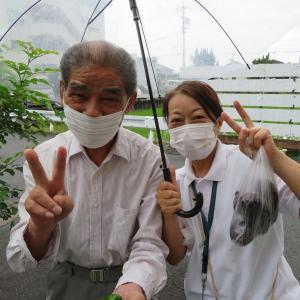 たんぽぽ甚目寺「夏野菜の収穫」