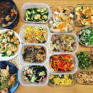 【感想】産前で年子の子供もおり料理、作り置きを初めてお願いしました。