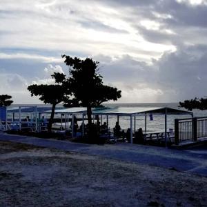 トロピカルビーチ・・・