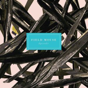 今日の1曲、Field Mouse の『Accessory』