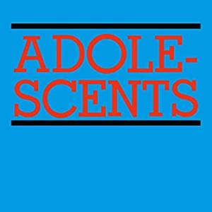 今日の1曲、Adolescents の『Self Destruct』