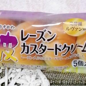 【ヤマザキ】薄皮 レーズンカスタードクリームパン
