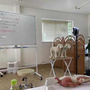 応用講座、鍼灸、『経絡経穴、心について』