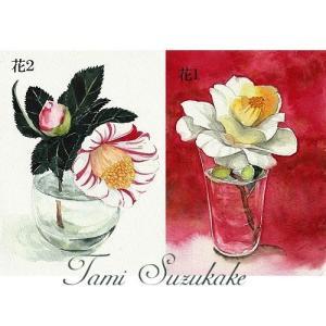 絵画販売・ポストカード「椿の花」