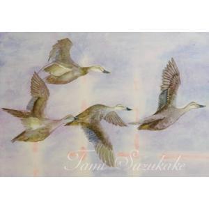 絵画販売・水彩画・原画「群れ飛ぶカルガモ」