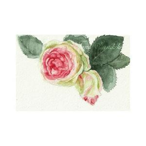 絵画販売・水彩・原画「薔薇の花」