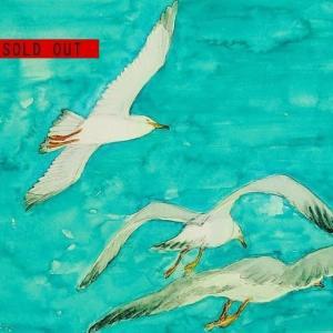 SOLD OUT水彩画「三羽のカモメ」お買い上げ頂きました、ありがとうございます。