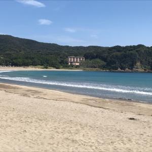 静岡・伊豆旅行2日目