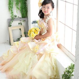 七五三好きな着物と好きなドレスでご撮影! 狛江市世田谷区喜多見フォトスタジオリーフ