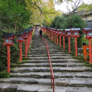 京都観光に行ってきました!