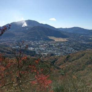 【121回目】金時山ハイキング #金時山