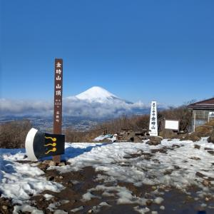 【123回目】金時山ハイキング #金時山