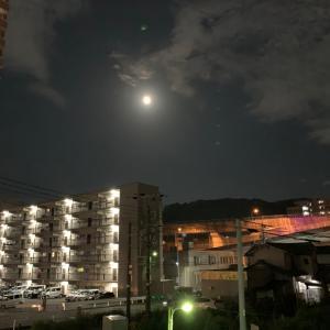 綺麗な月の昨晩の晩御飯