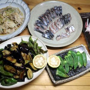 久しぶりの自宅の食卓。~自家栽培秋ナスとピーマン・インゲンの揚げ浸し、サゴシの皮焼き、オクラ他~