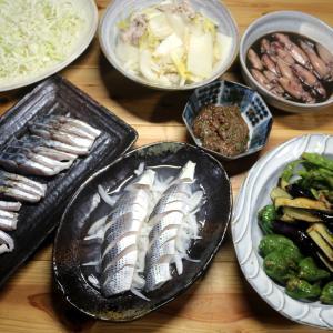 八幡浜近海産コノシロの酢締め、サゴシの皮焼き、自家栽培夏野菜の揚げ浸しほか。