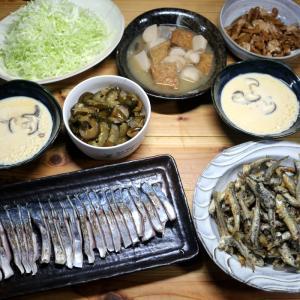 八幡浜近海産サゴシの皮焼き、ホータレ(カタクチイワシ)のから揚げ、自家栽培キュウリの漬けもの他。