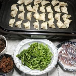 八幡浜近海産アジの刺し身、自家栽培ブロッコリーとレタス、餃子ほか。