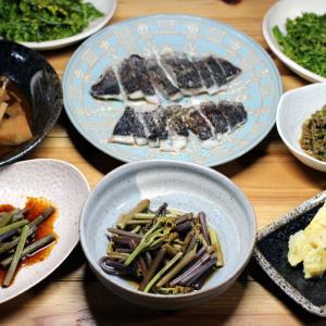 自家採取タケノコの木の芽味噌和えと煮もの、自家採取ワラビの和えもの・炒めもの・タタキ、クロ刺身他