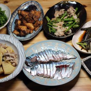 八幡浜近海産養殖サバの刺し身、自家採取タケノコの煮もの・炒めもの・刺し身、ワラビの炒めものほか。