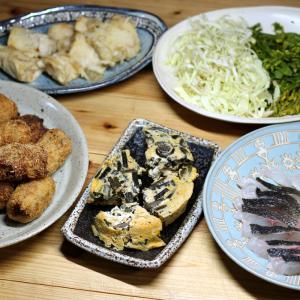 おととい採ってきたワラビ入り玉子焼き、タケノコ入りコロッケ、グレの刺し身ほか。