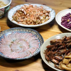 八幡浜近海産アカエビの刺し身と頭のから揚げ、自家栽培タマネギのポン酢和え、肉じゃがグラタンほか。