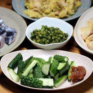 自家栽培四葉きゅうりのもろきゅう(もろみ味噌添え)、自家掘りタケノコの炒めもの、サワラの皮焼き他
