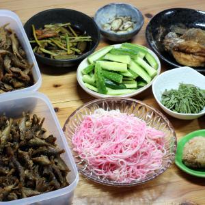 きのう釣ってきた豆アジの佃煮風と南蛮漬け、久万高原町特産「美川手のべ素麺」、自家栽培キュウリ他。