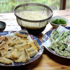 きのう釣ってきたキス・メゴチ・ベラ・マダイと自家栽培インゲン・オクラ・アオジソの天ぷらそうめん。