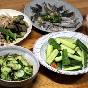 自家栽培キュウリとワカメの酢のもの、キュウリのサラダ、夏野菜と豚肉の茹で浸し、グレの皮焼きほか。