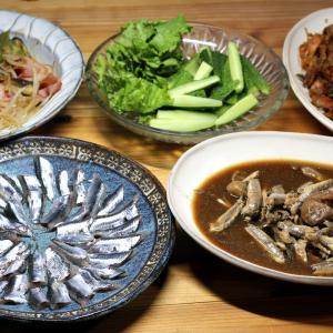 八幡浜近海産ホータレ(カタクチイワシ)の刺し身と梅煮、自家栽培キュウリほか。