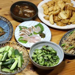 自家栽培キュウリのサラダと酢のもの、自家栽培ポテトフライ、自家栽培オクラとモヤシの炒めものほか。