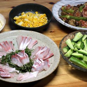 八幡浜近海産カンパチの刺し身、自家栽培キュウリ、自家栽培オクラ・ナス・ベーコンの炒めものほか。