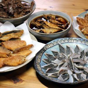 きょう釣ってきたグレ(メジナ)の皮焼き、ベラとウミタナゴのから揚げ、アジの南蛮漬けほか。