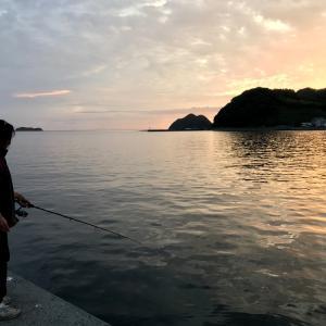 小鯵がたくさん釣れました。~三瓶・有網代の波止での釣果・Part19~