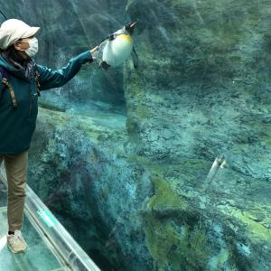 はじめての旭山動物園。