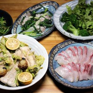 八幡浜近海産養殖ヒラマサの刺し身、サゴシとキャベツの炒めもの、自家栽培ブロッコリーとレタスほか。
