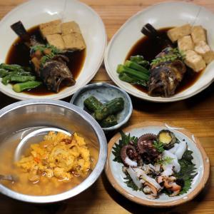 """きのう採ってきたアカウニの""""好きなだけぶっかけウニ丼""""、ホゴ(カサゴ)と豆腐の煮つけほか。"""
