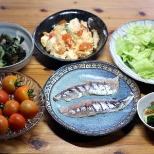 宇和海産トビウオの自家製酢締め、自家栽培ミディトマト、キュウリの梅肉和えほか。