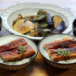 高知県産ウナギの蒲焼き丼。