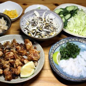 宇和海産スルメイカの刺し身、自家採取ヒジキとタマネギのサラダ、自家栽培キュウリ、鶏からほか。