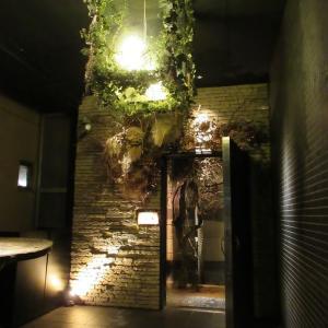 アニマリベラ:森の中に分け入るような不思議な隠れ家レストラン